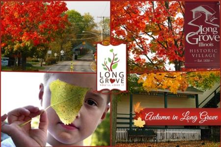 LG-Autumn