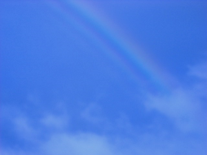 rainbow - 1Sojournal