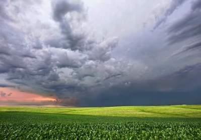 Carroll County, Iowa (Photo Credit: Nancy Kruskop)